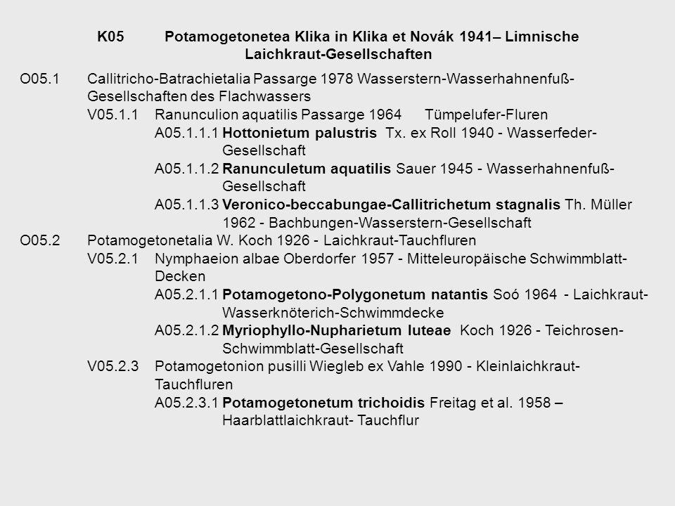 K05 Potamogetonetea Klika in Klika et Novák 1941– Limnische Laichkraut-Gesellschaften