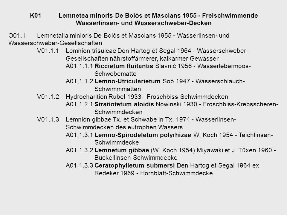 K01 Lemnetea minoris De Bolòs et Masclans 1955 - Freischwimmende Wasserlinsen- und Wasserschweber-Decken