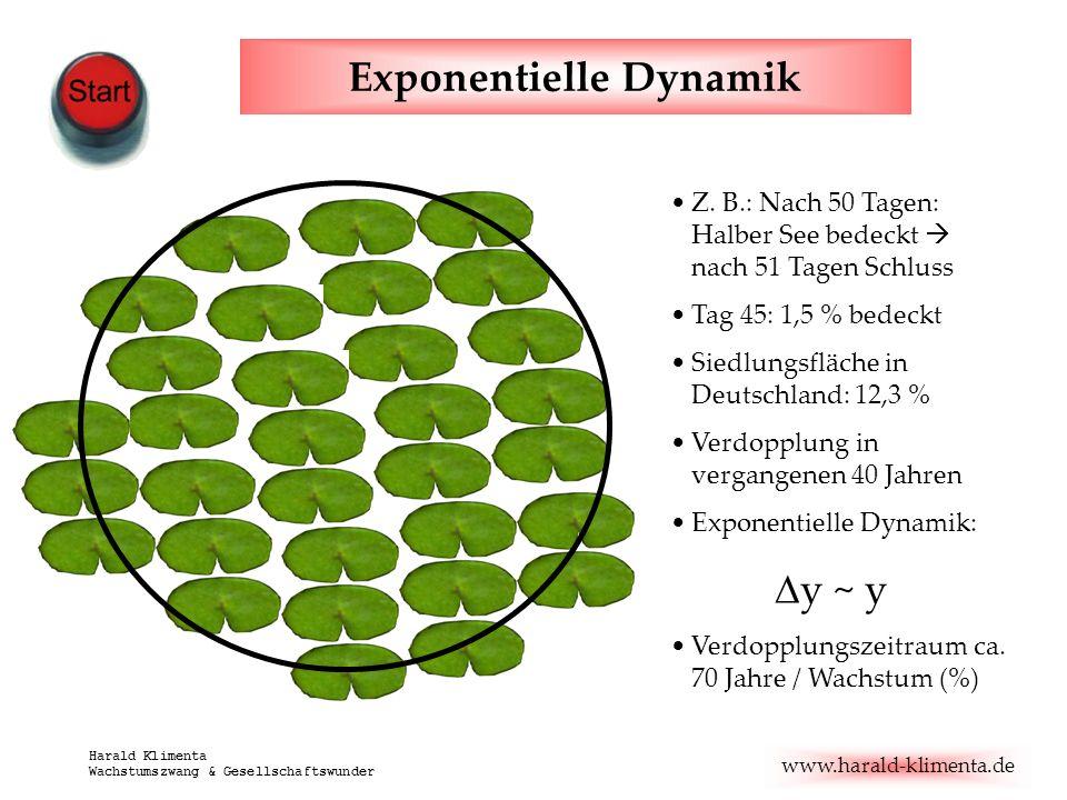 Exponentielle Dynamik