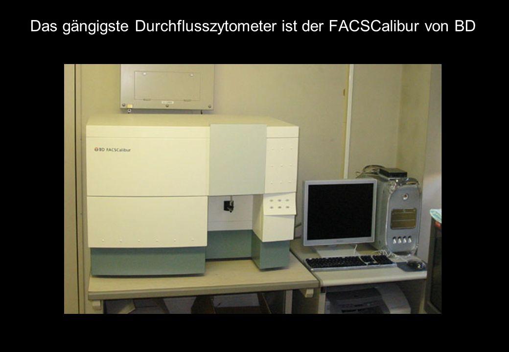 Das gängigste Durchflusszytometer ist der FACSCalibur von BD