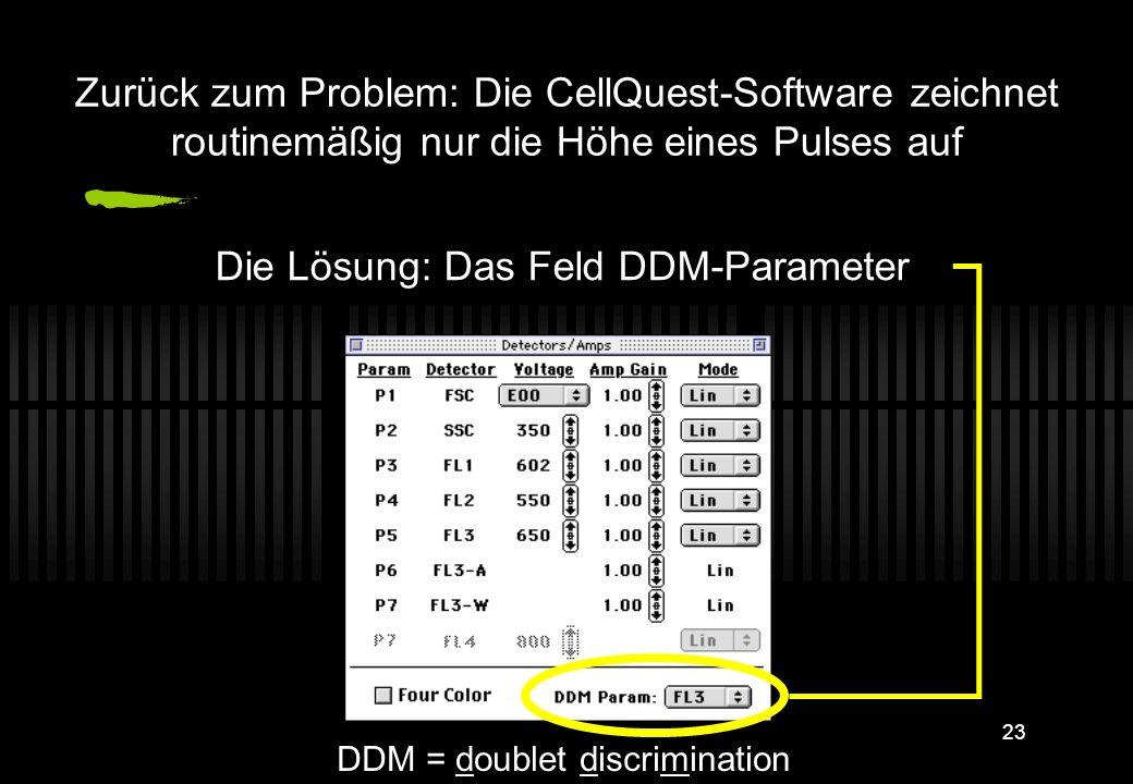 Die Lösung: Das Feld DDM-Parameter