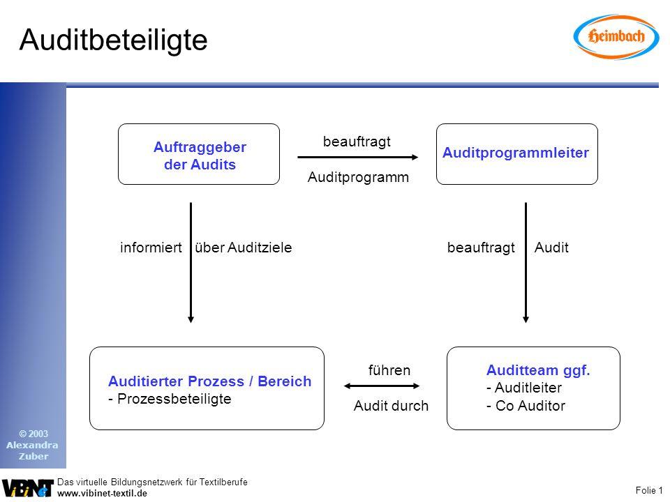 Auditbeteiligte beauftragt Auditprogramm Auftraggeber der Audits