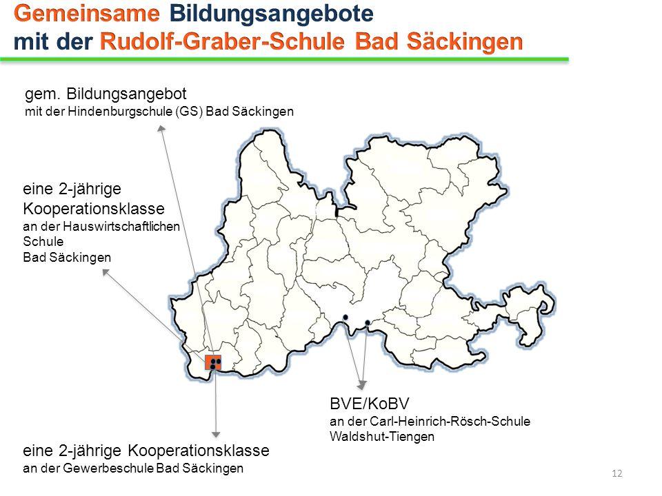 Gemeinsame Bildungsangebote mit der Rudolf-Graber-Schule Bad Säckingen
