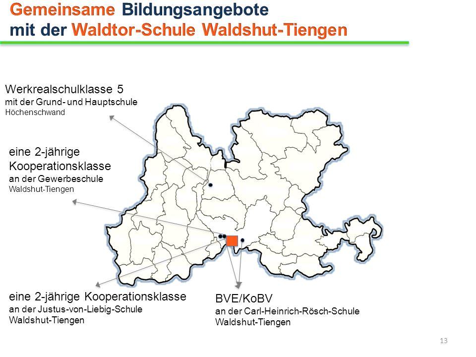 Gemeinsame Bildungsangebote mit der Waldtor-Schule Waldshut-Tiengen