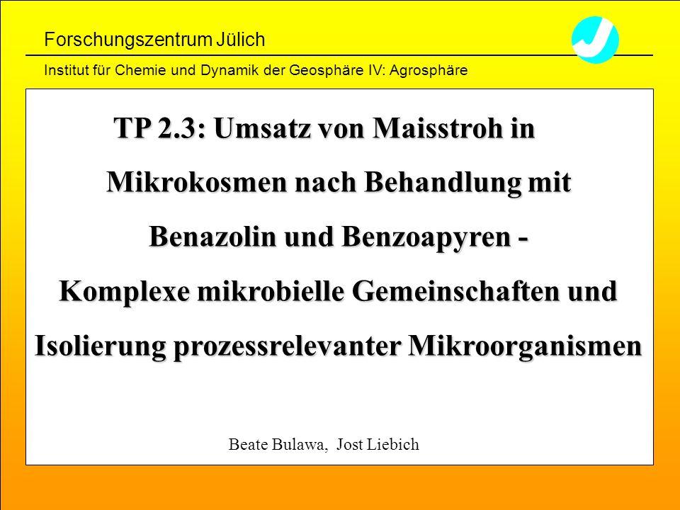 Beate Bulawa, Jost Liebich