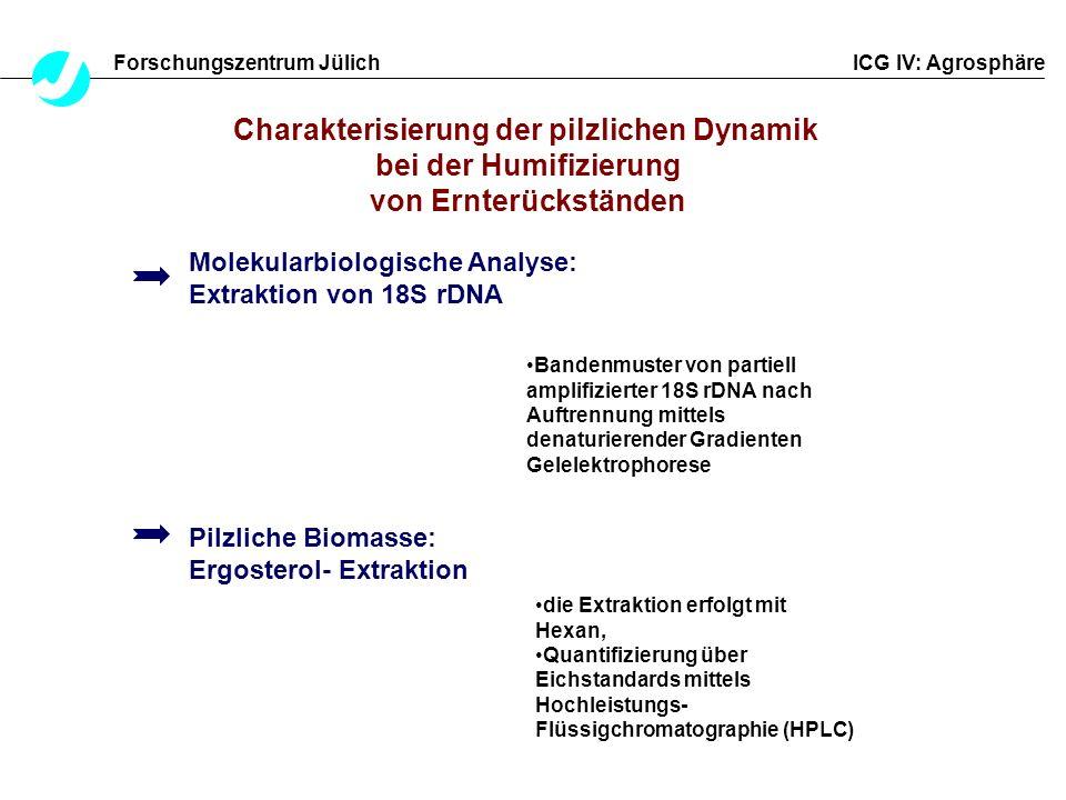 Charakterisierung der pilzlichen Dynamik