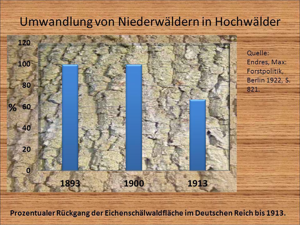 Umwandlung von Niederwäldern in Hochwälder