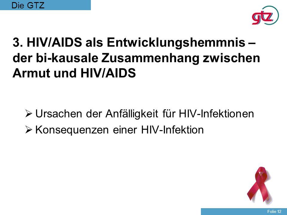 3. HIV/AIDS als Entwicklungshemmnis – der bi-kausale Zusammenhang zwischen Armut und HIV/AIDS