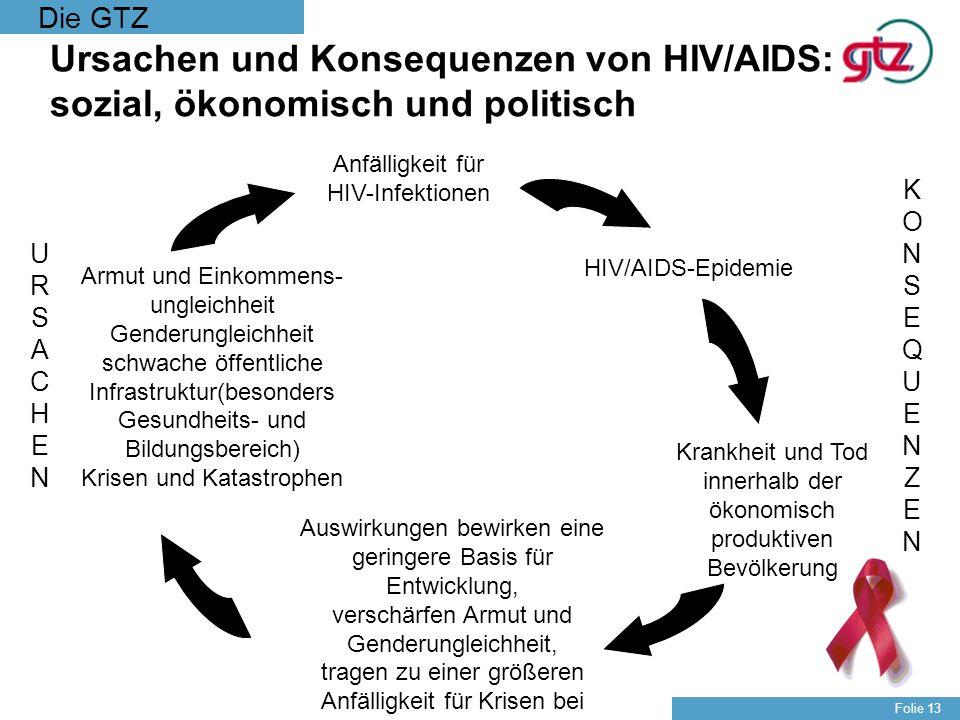 Ursachen und Konsequenzen von HIV/AIDS: sozial, ökonomisch und politisch