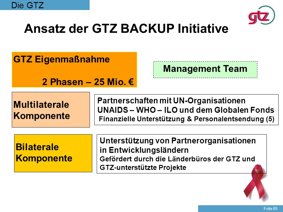Ansatz der GTZ BACKUP Initiative