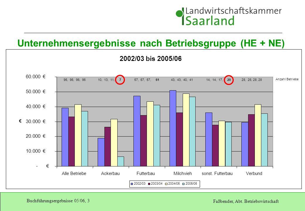 Unternehmensergebnisse nach Betriebsgruppe (HE + NE)