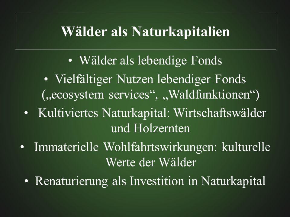 Wälder als Naturkapitalien