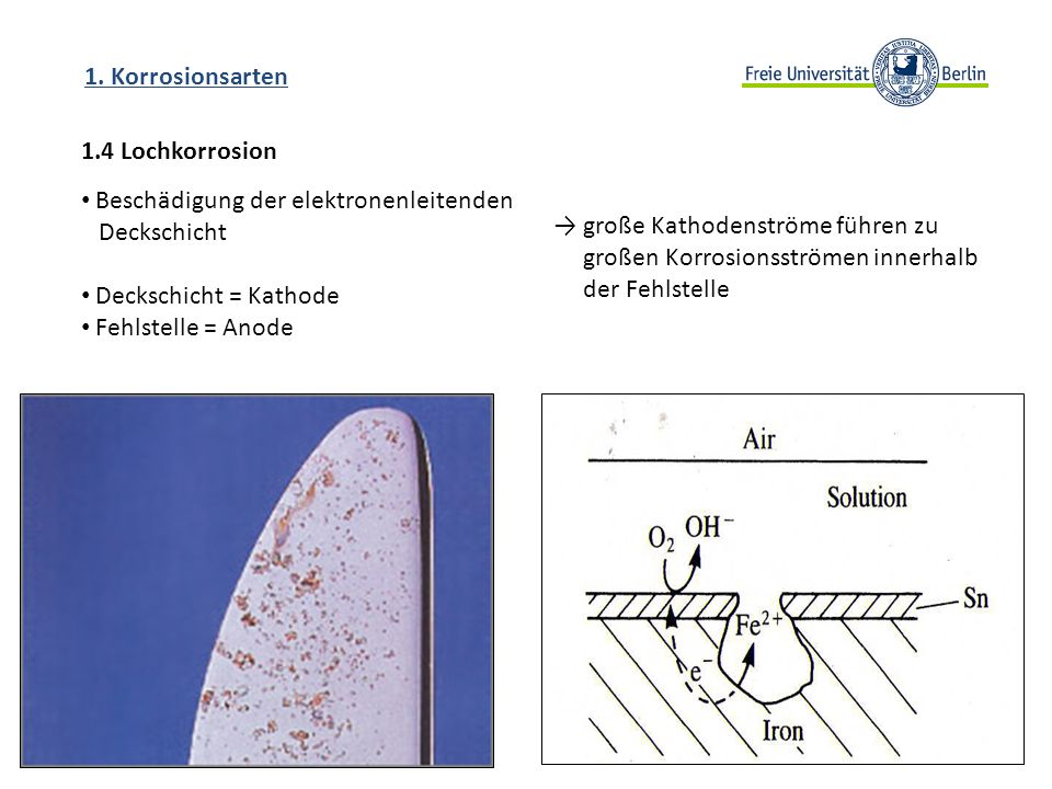 1. Korrosionsarten 1.4 Lochkorrosion. Beschädigung der elektronenleitenden. Deckschicht. Deckschicht = Kathode.