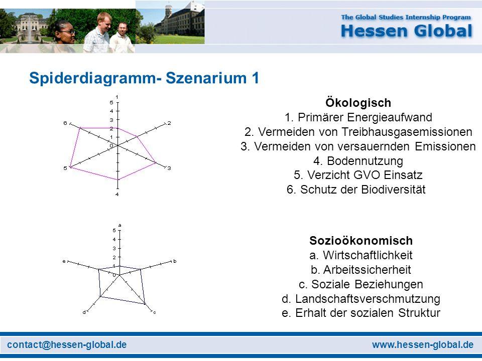 Spiderdiagramm- Szenarium 1