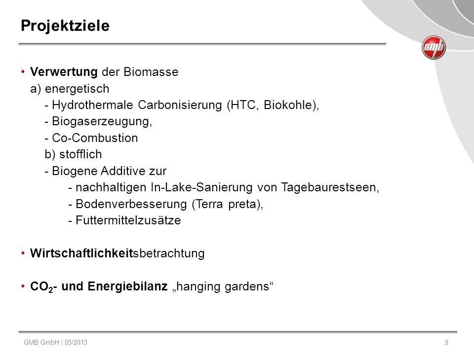 Projektziele Verwertung der Biomasse a) energetisch
