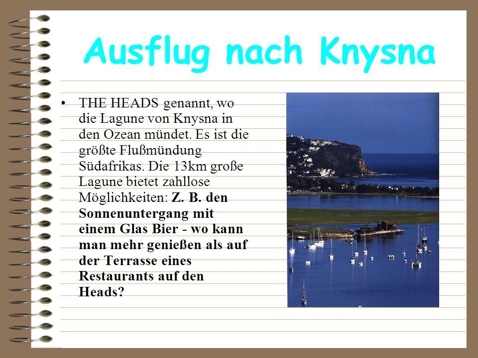 Ausflug nach Knysna