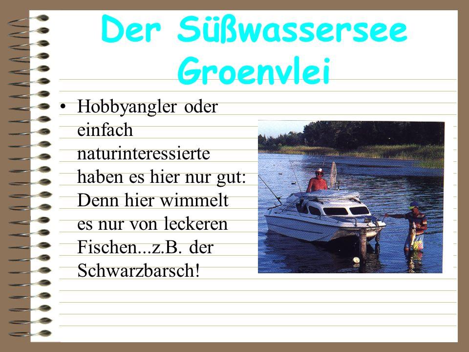 Der Süßwassersee Groenvlei