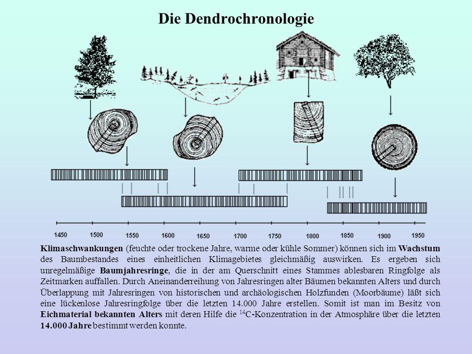 Die Dendrochronologie