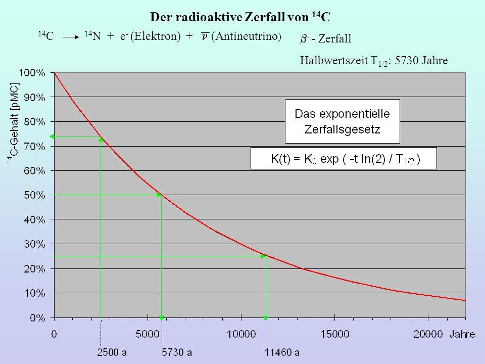 Der radioaktive Zerfall von 14C
