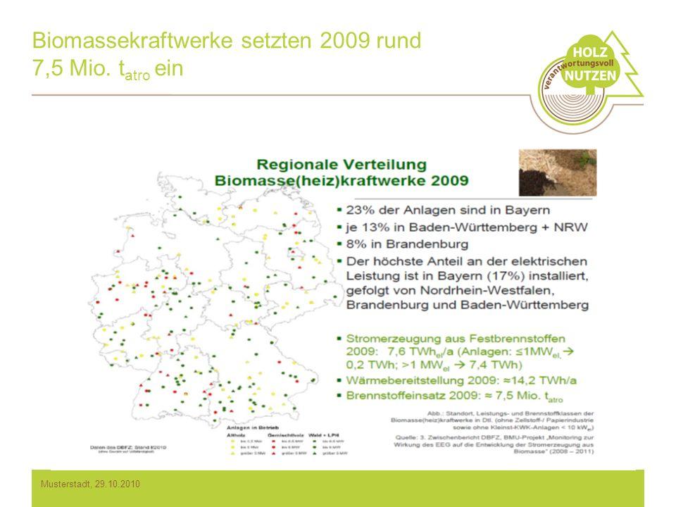 Biomassekraftwerke setzten 2009 rund 7,5 Mio. tatro ein