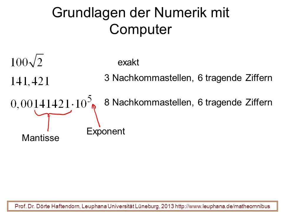 Grundlagen der Numerik mit Computer