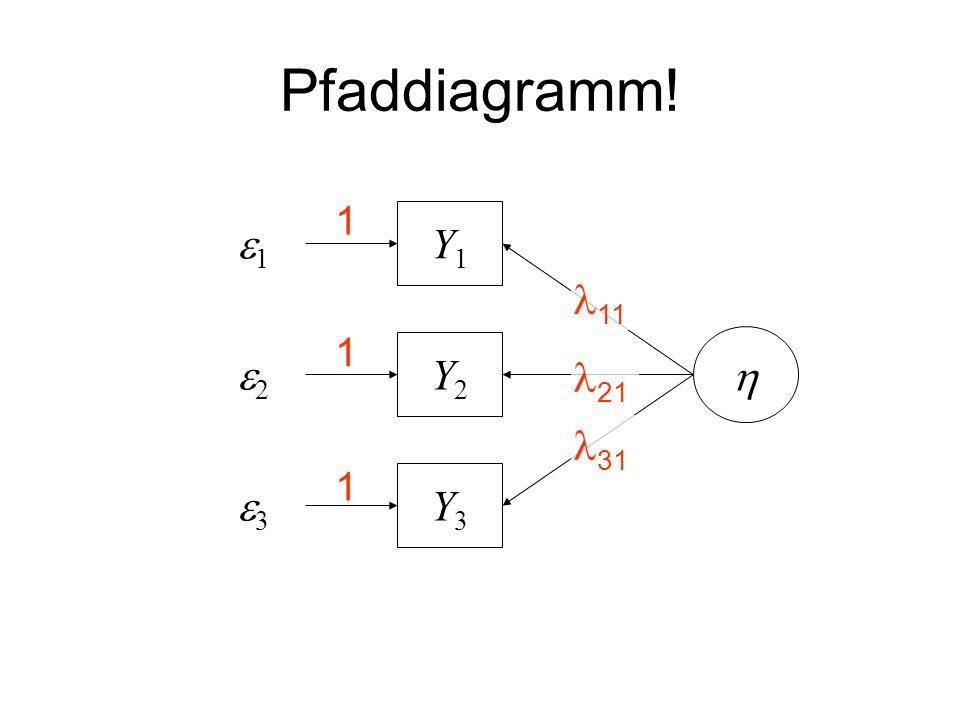 Pfaddiagramm! 1 e1 Y1 11 1 e2 Y2 h 21 31 1 e3 Y3