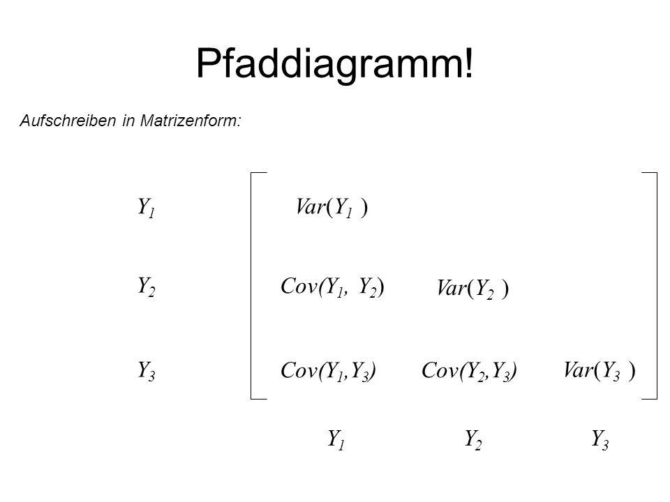Pfaddiagramm! Y1 Var(Y1 ) Y2 Cov(Y1, Y2) Var(Y2 ) Y3 Cov(Y1,Y3)