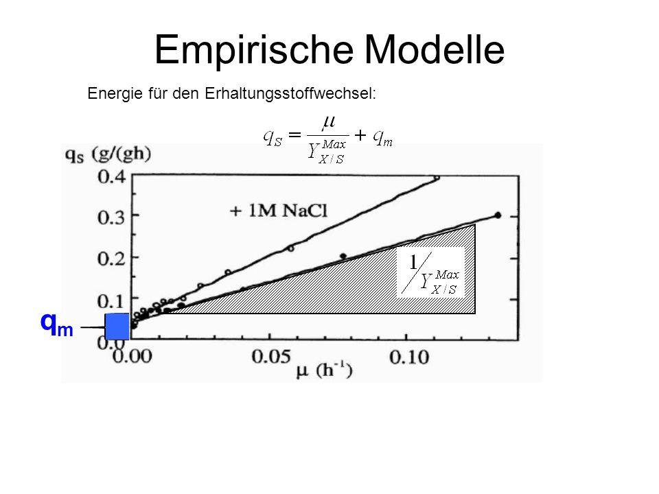 Empirische Modelle Energie für den Erhaltungsstoffwechsel: qm