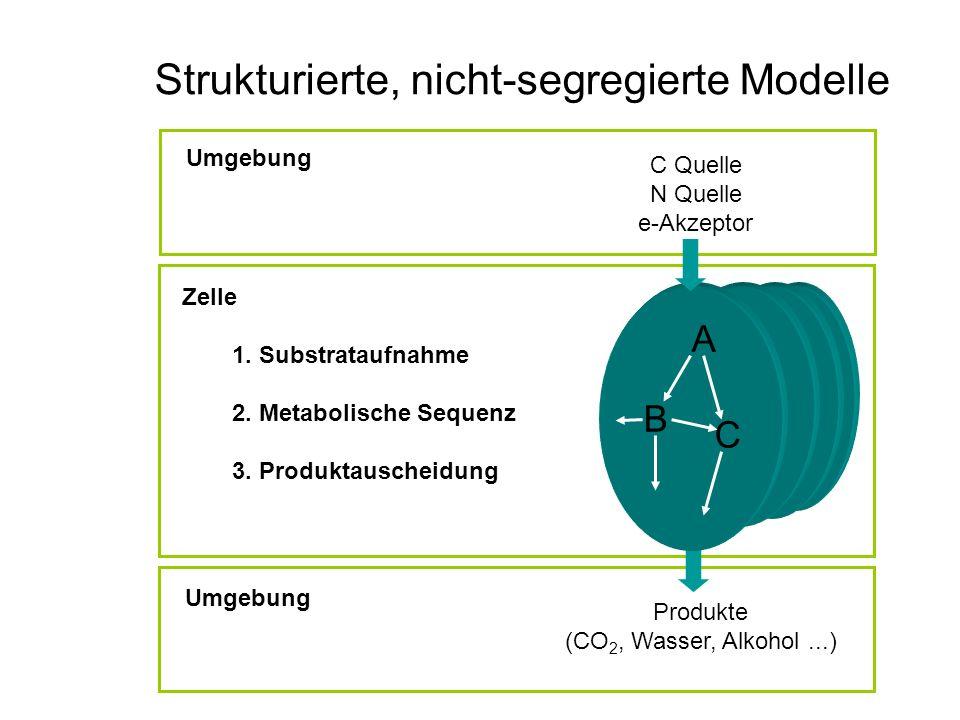 Strukturierte, nicht-segregierte Modelle
