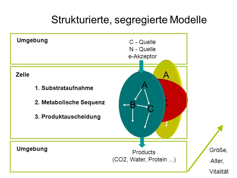 Strukturierte, segregierte Modelle
