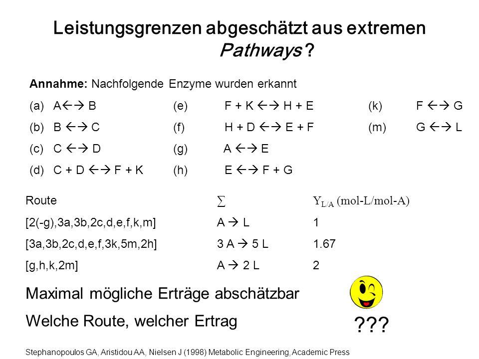 Leistungsgrenzen abgeschätzt aus extremen Pathways