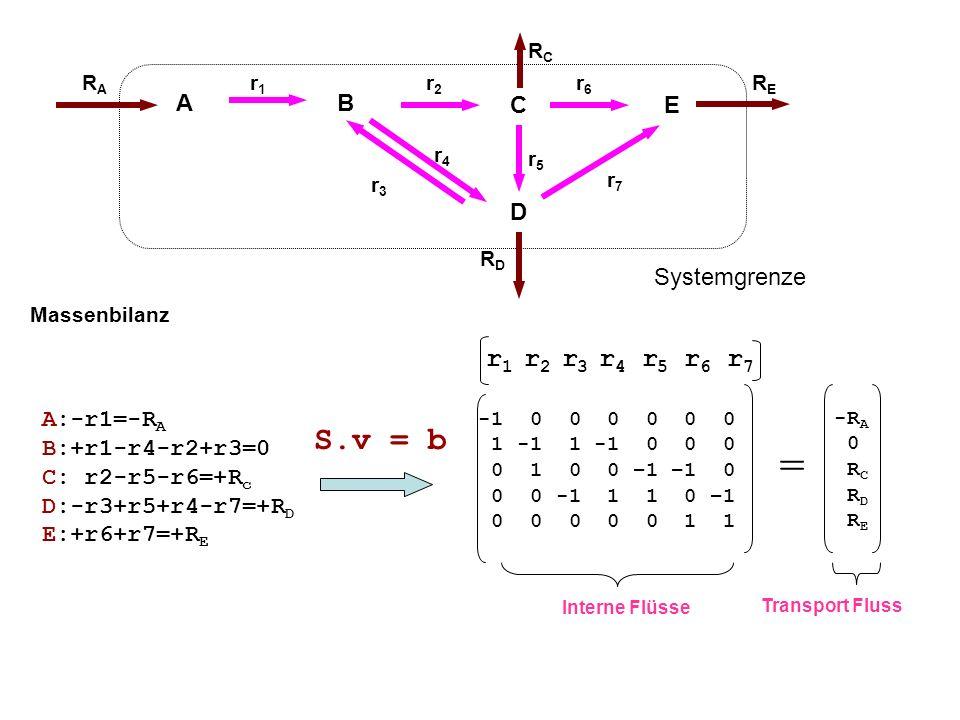 = S.v = b r1 r2 r3 r4 r5 r6 r7 A B C E Systemgrenze D A:-r1=-RA