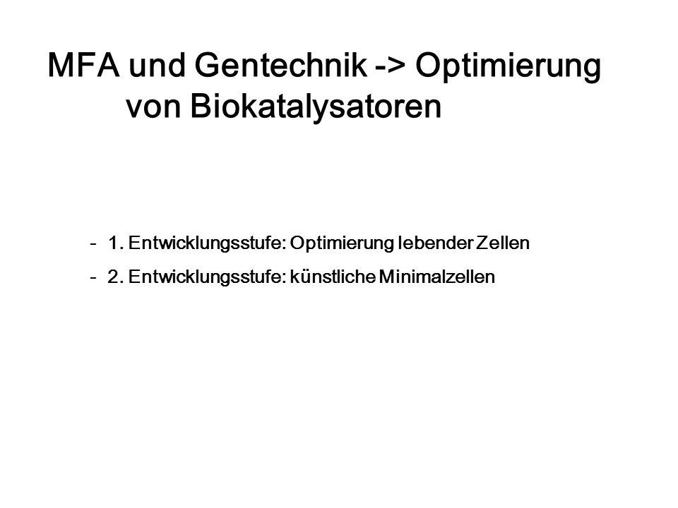 MFA und Gentechnik -> Optimierung von Biokatalysatoren