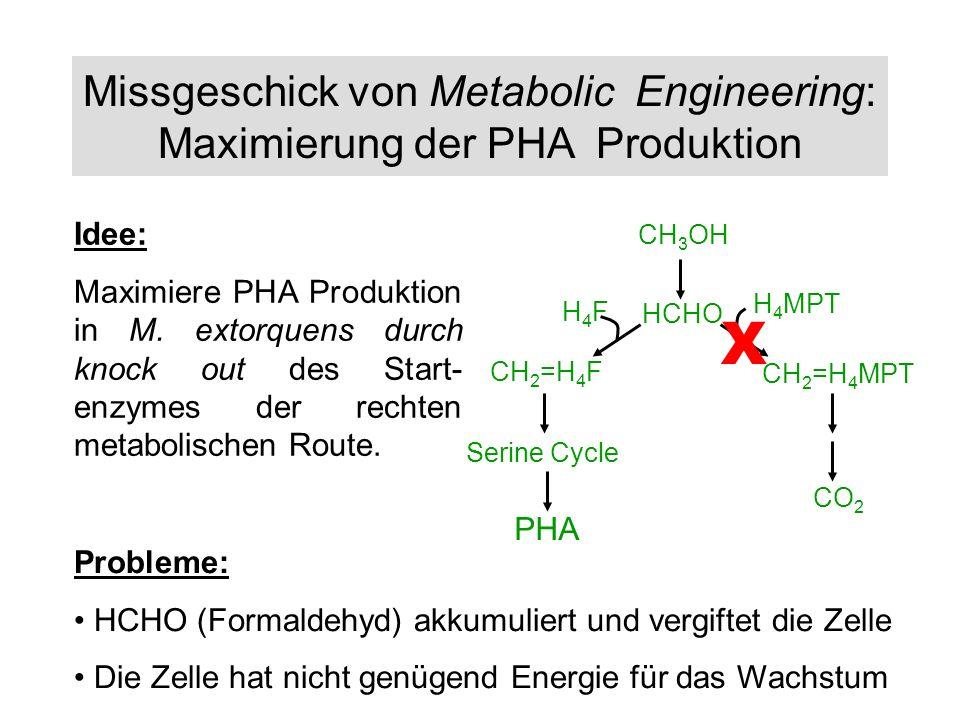 Missgeschick von Metabolic Engineering: Maximierung der PHA Produktion