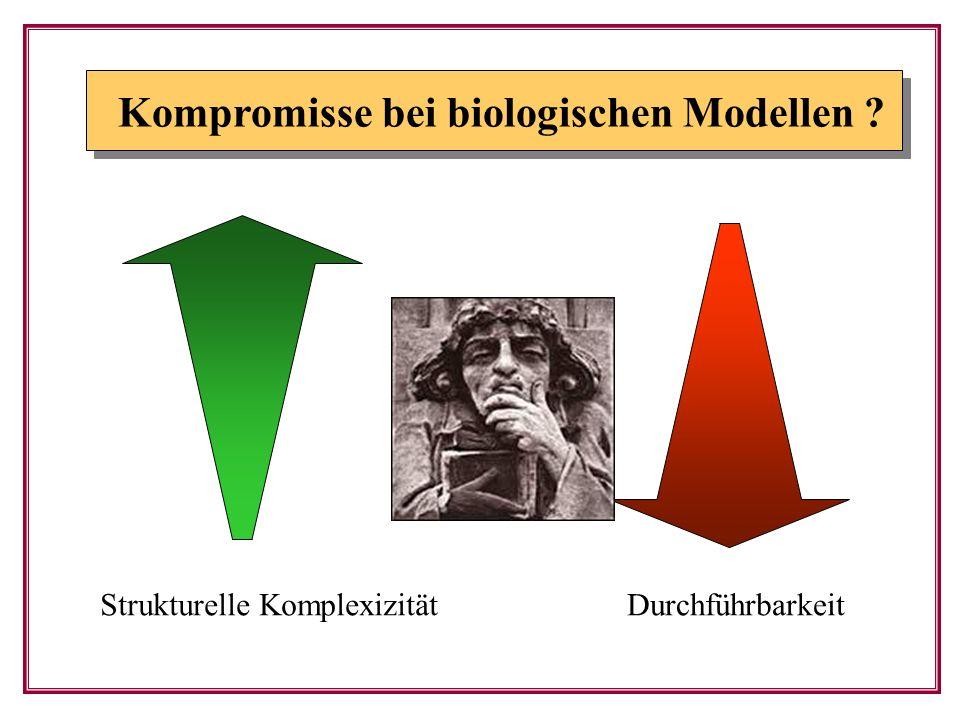 Kompromisse bei biologischen Modellen
