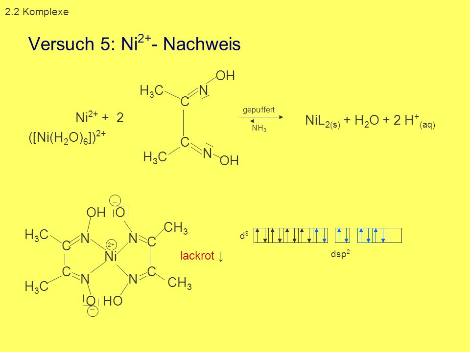 Versuch 5: Ni2+- Nachweis