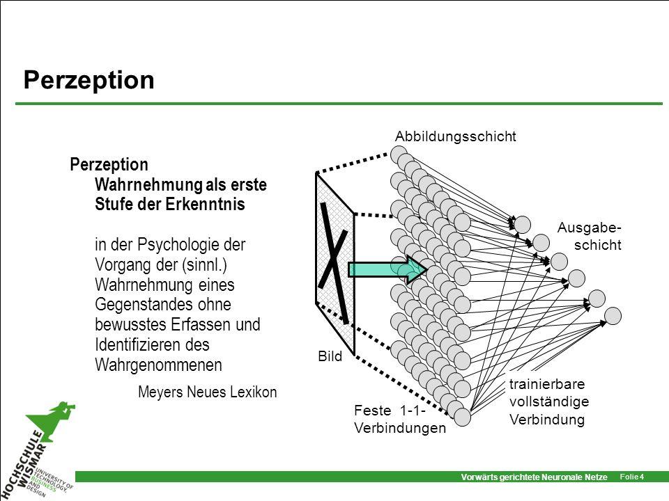 Perzeption Abbildungsschicht. Bild. Feste 1-1- Verbindungen. trainierbare vollständige Verbindung.