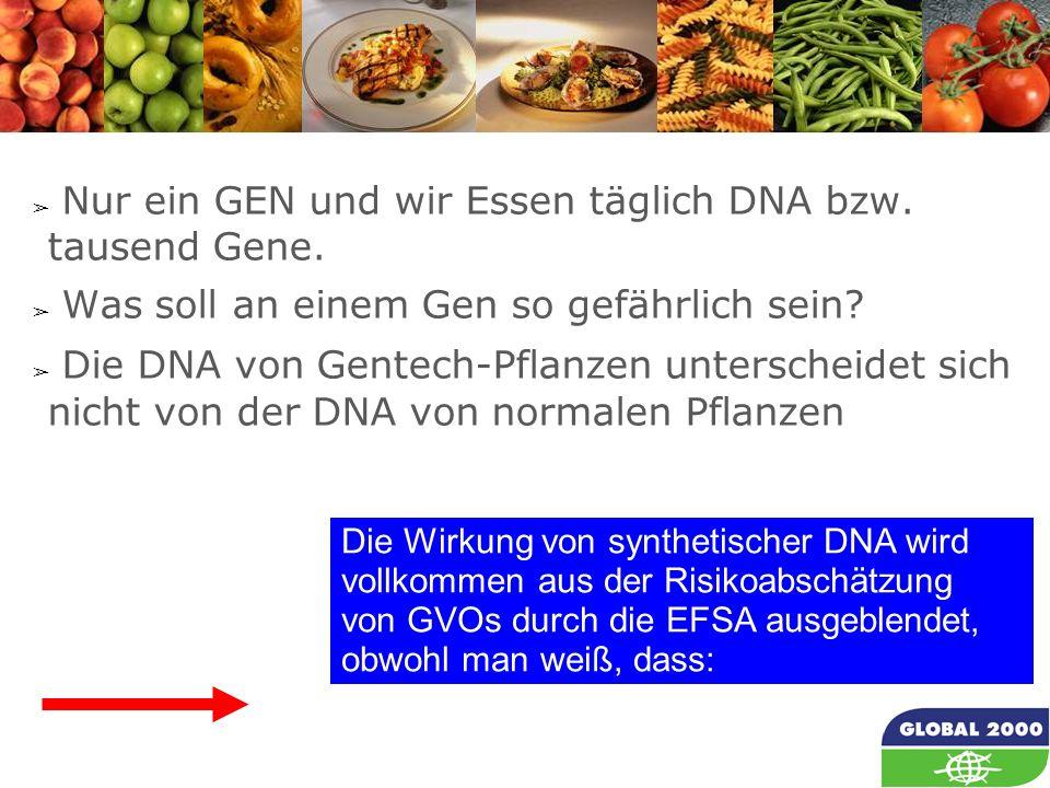 Nur ein GEN und wir Essen täglich DNA bzw. tausend Gene.