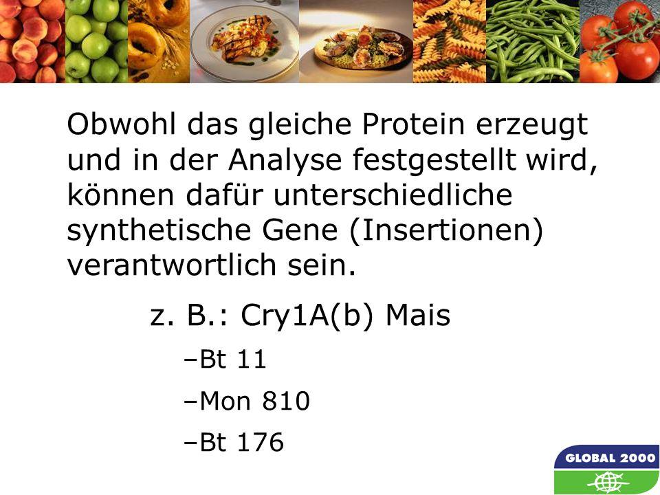 Obwohl das gleiche Protein erzeugt und in der Analyse festgestellt wird, können dafür unterschiedliche synthetische Gene (Insertionen) verantwortlich sein.