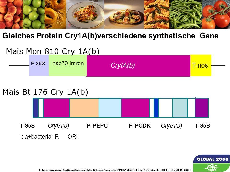 Gleiches Protein Cry1A(b)verschiedene synthetische Gene