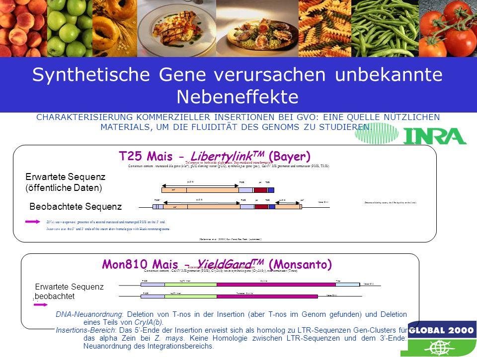 Synthetische Gene verursachen unbekannte Nebeneffekte
