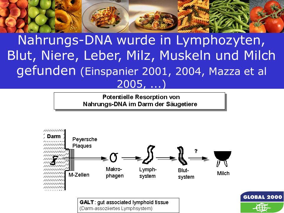 Nahrungs-DNA wurde in Lymphozyten, Blut, Niere, Leber, Milz, Muskeln und Milch gefunden (Einspanier 2001, 2004, Mazza et al 2005, ...)