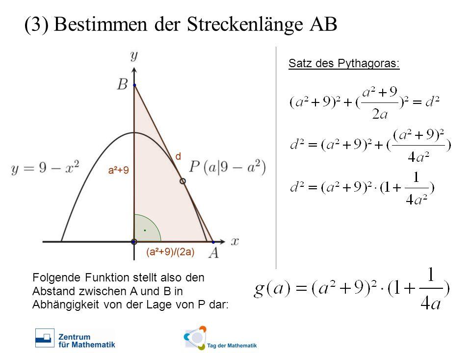 (3) Bestimmen der Streckenlänge AB