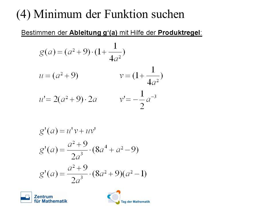 (4) Minimum der Funktion suchen