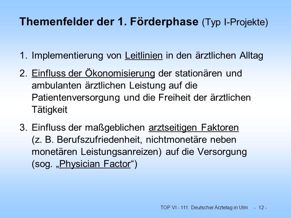 Themenfelder der 1. Förderphase (Typ I-Projekte)