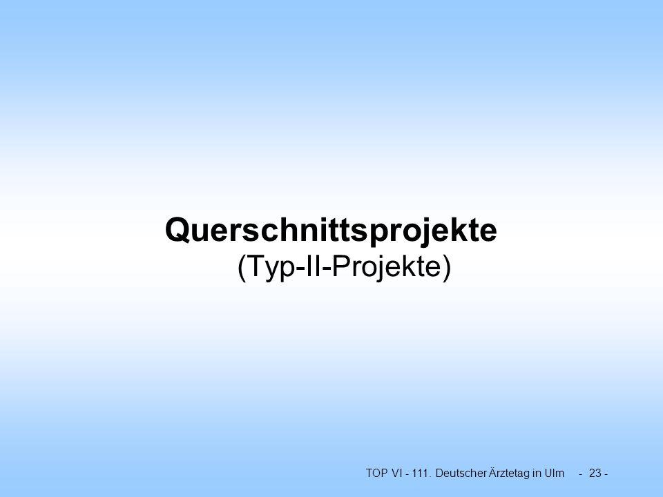 Querschnittsprojekte (Typ-II-Projekte)