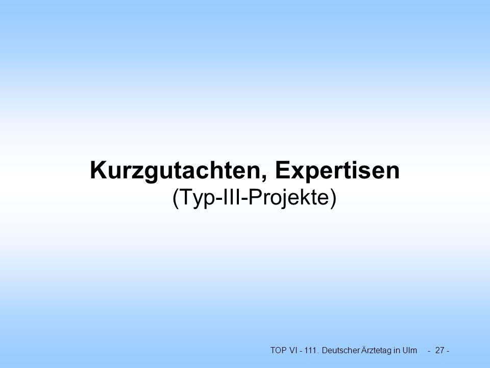 Kurzgutachten, Expertisen (Typ-III-Projekte)