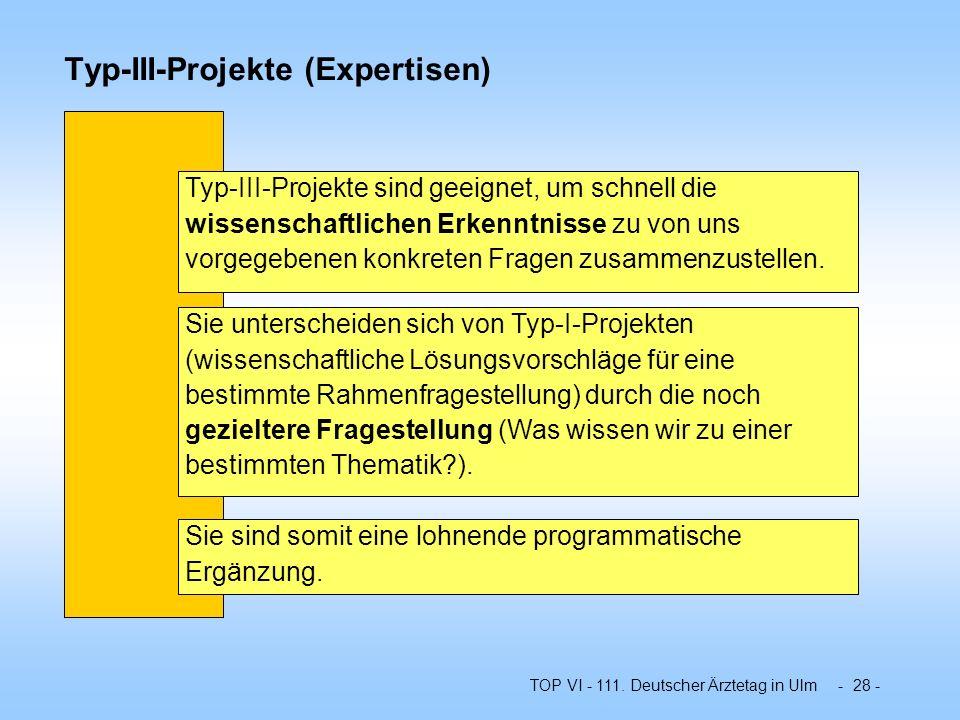 Typ-III-Projekte (Expertisen)