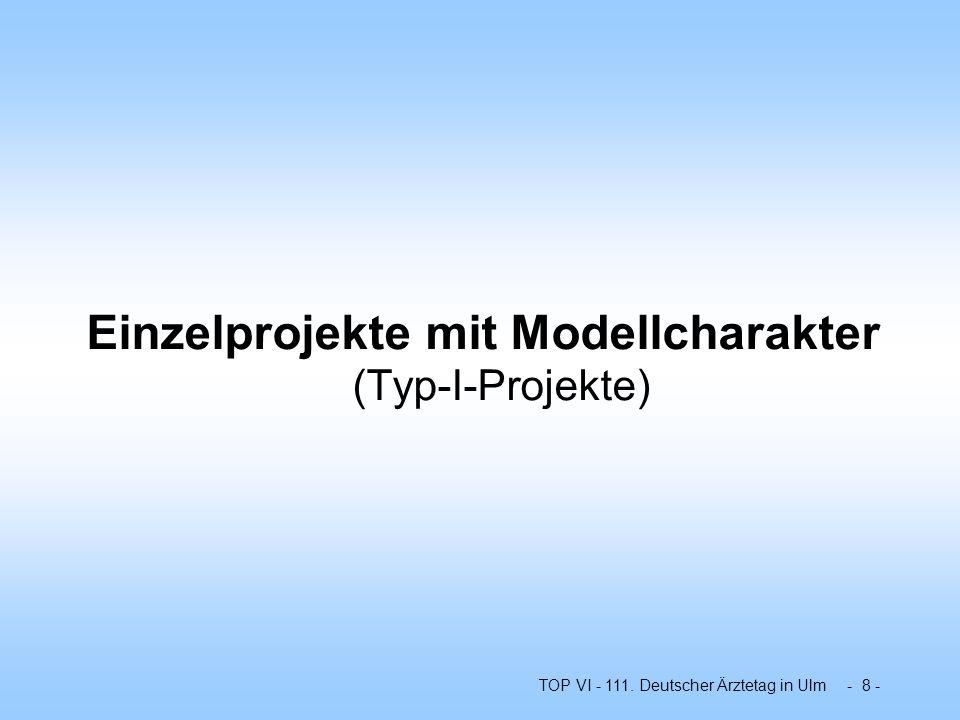 Einzelprojekte mit Modellcharakter (Typ-I-Projekte)