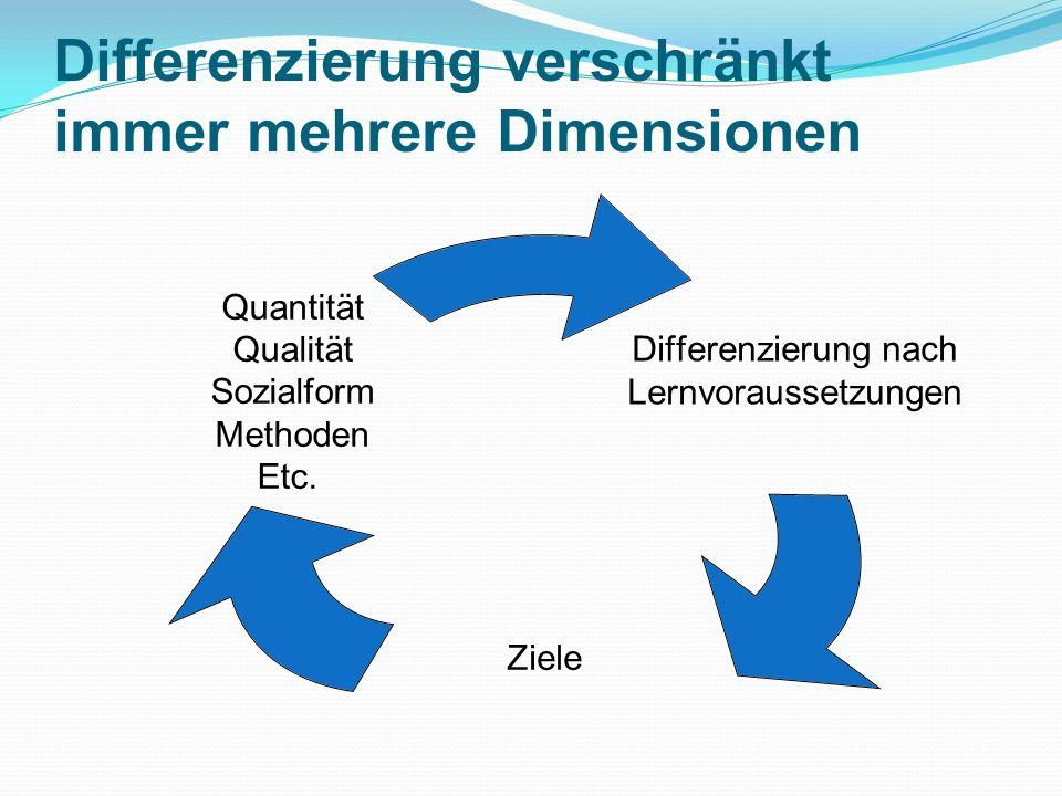 Differenzierung verschränkt immer mehrere Dimensionen